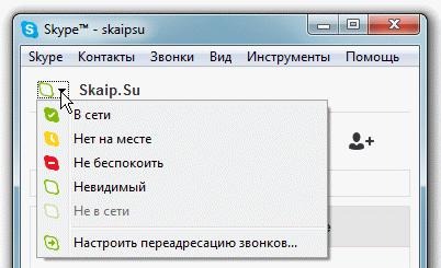 что в скайпе означает цвет значка
