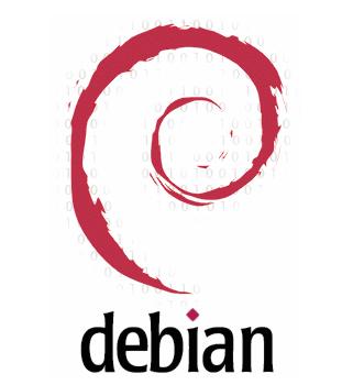 сделайте debian skype install и наслаждайтесь общением