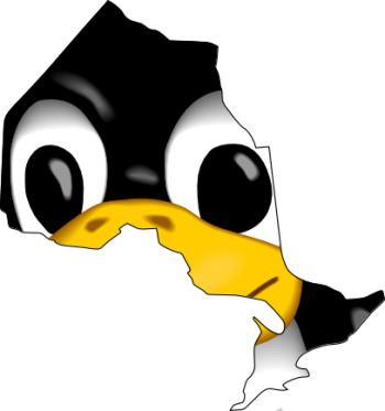 мы поможем вам скачать скайп для линукс чтобы вы не думали что и как делать