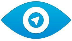 Проект дурова telegram стал самым популярным в России