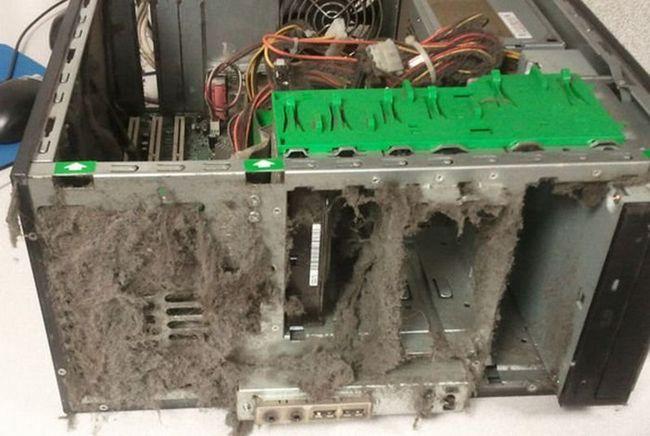Чистка ноутбука от пыли - мы вам расскажем