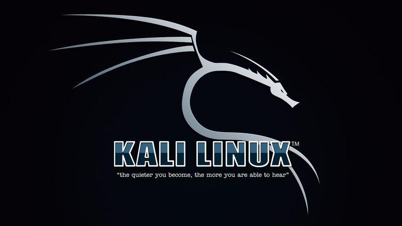 skype для kali linux - хорошее начало для приятного общения