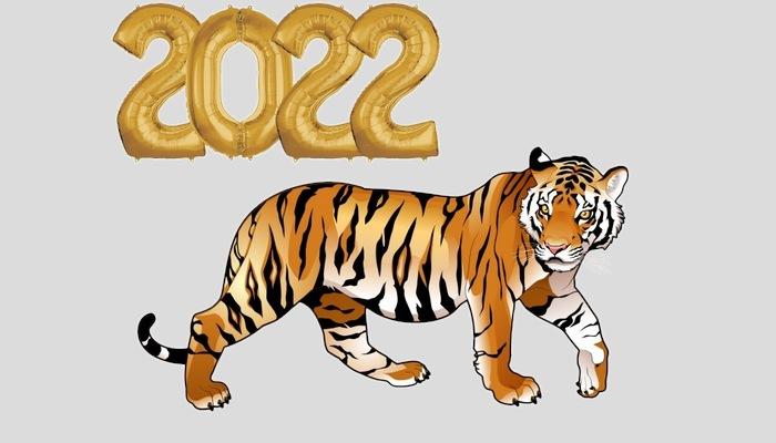 Таймер — сколько дней осталось до нового года 2022 - года водяного тигра: точный счетчик, история нового года, кто встретит первый и кто последний, традиции
