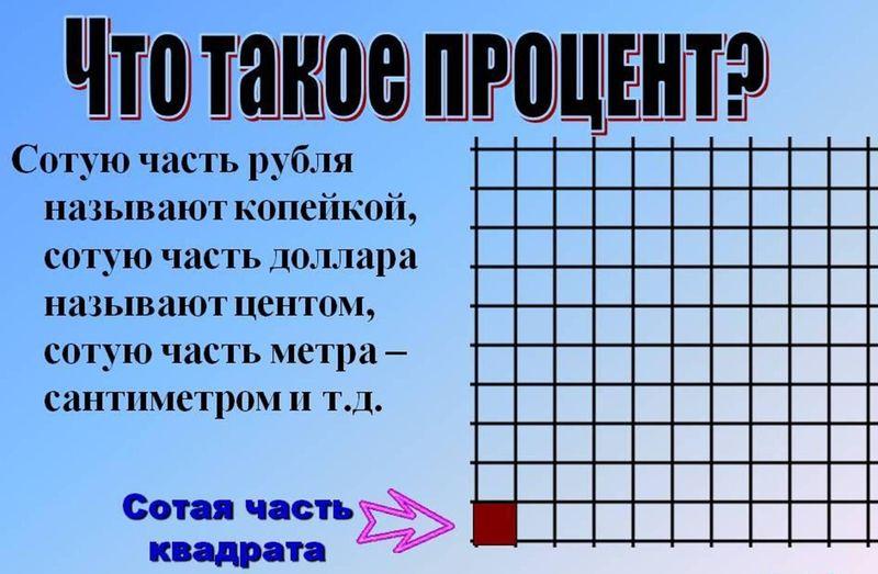 что такое процент и как посчитать процент от числа